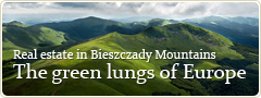Real estate in Bieszczady Mountains - The green lungs of Europe
